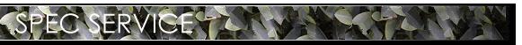 TT01-specservice