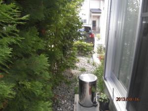 施工前 奥からのお庭です。
